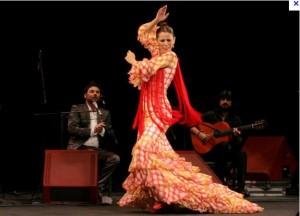 Flamenco-300x216