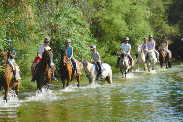Horse-riding-river-ride-1