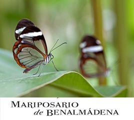 Mariposario-Benalmadena