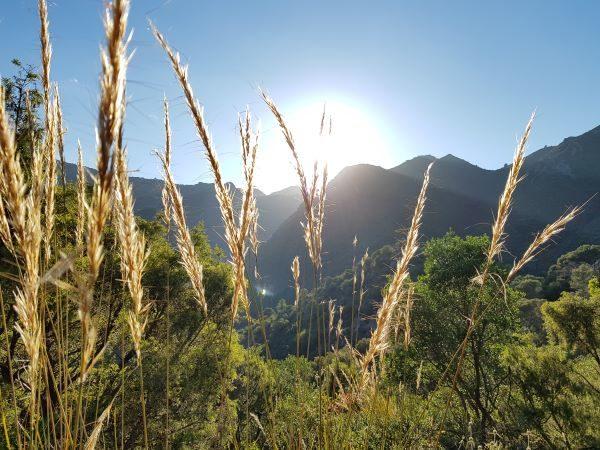 Hiking Sierra de las Nieves